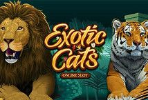 Exotic Cats